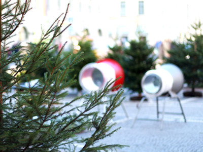 EVINTA_Weihnachtsfeier_Weihnachtsbaumschlagen_Abpackstationen