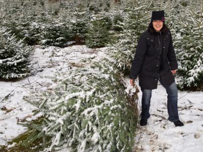 EVINTA_Weihnachtsfeier_Weihnachtsbaumschlagen_Frau mit abgeholztem Weihnachtsbaum